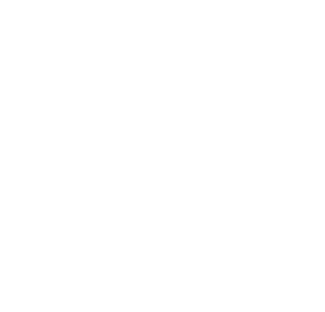 Secil Cements
